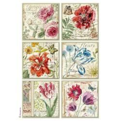 Dekupázs rizspapír A4 csom. - Botanic flower cards