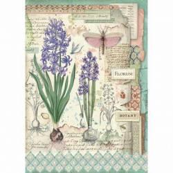 Dekupázs rizspapír A4 csom. - Botanikus virágok hagymával