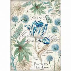 Dekupázs rizspapír A4 csom. - Kék tulipán